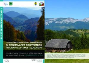 Fundamentare pentru conservarea și promovarea arhitecturii tradiționale și a meșteșugurilor