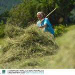 Ökotourismus in der Region Fundata – Moieciu de Sus